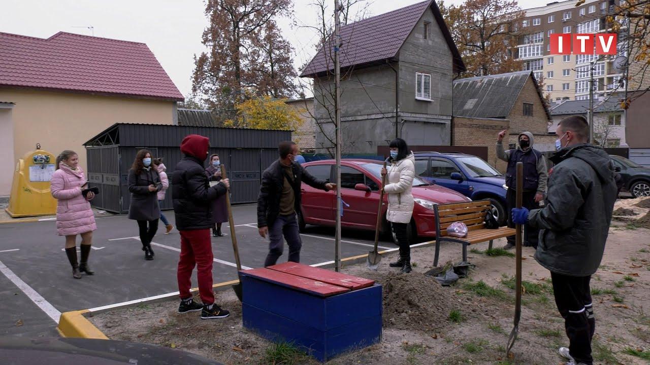 В Ірпені планують висадити сотню лип (відео)